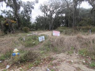 Amelia Bluff LLC was fined after it was discovered trees on the construction site that were protected by Fernandina Beach ordinances were removed. A mitigation plan has been submitted to the city by the developer. JULIA ROBERTS/NEWS-LEADER