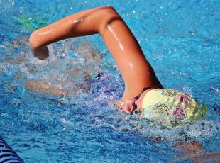 With 15 finishes of third or better, the Camden County High swimmers paced both the girls and boys standings last Saturday at the Gator Invitational, hosted by Ware.