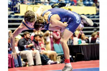 Nineteen Wildcat wrestlers placed in their weight classes last weekend as Camden County High placed two teams in the top five.