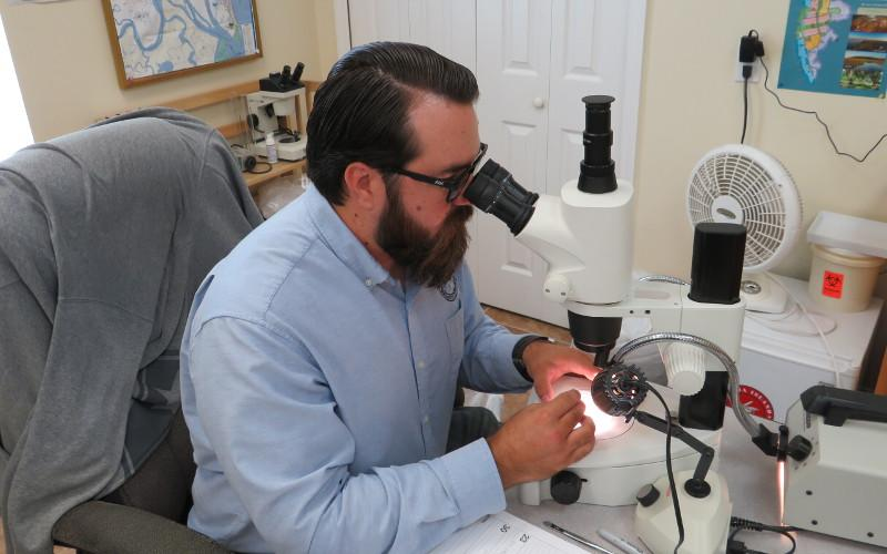 Anthony Dunkelberger is an entomologist with a mission to protect Amelia Island from the annoyance and disease associated with mosquitoes. He began his career with the Amelia Island Mosquito Control District in June. JULIA ROBERTS/NEWS-LEADER