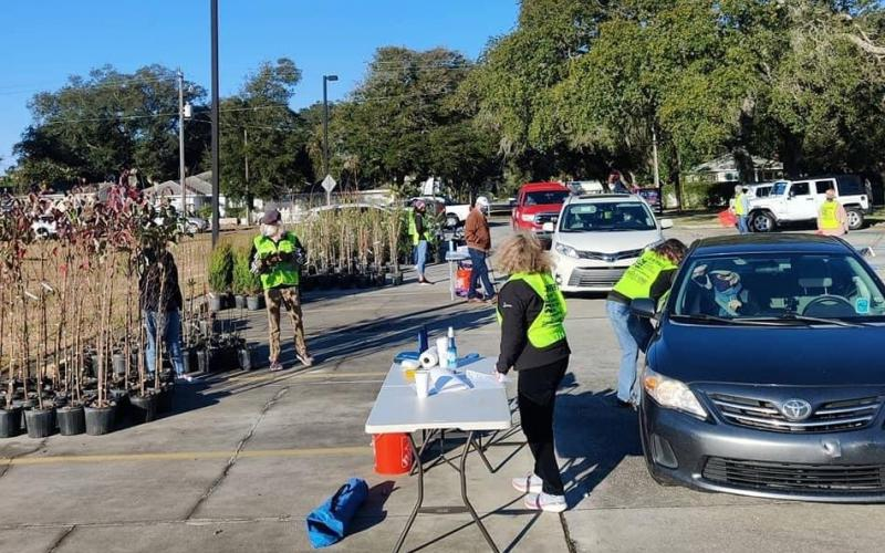 Volunteers help with the Keep Nassau Beautiful Florida Arbor Day Free Tree drive-thru.